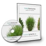 1_Freigestellte-Pflanzen-Architektur-Visualisierung