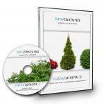 1_Pflanzen-Architektur-Staffage