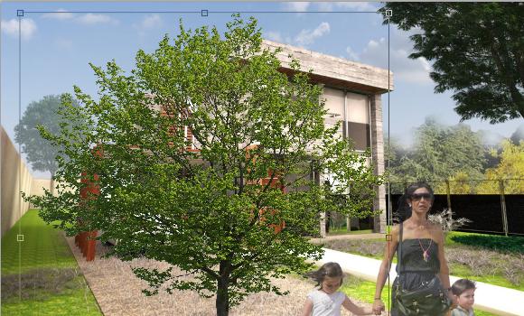 30_Baum-in-Architektur-Rendering-integrieren