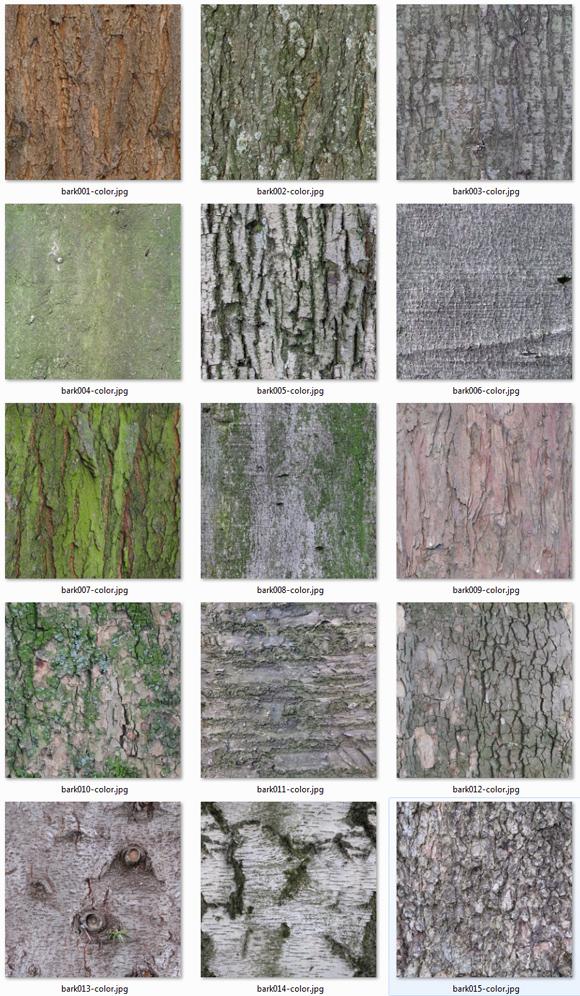 Download Texturen Baumrinde