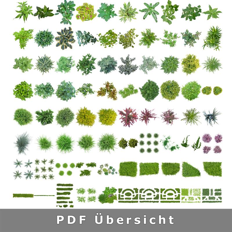 2-sammlung-pflanzen-transparenter-hintergrund-grundriss