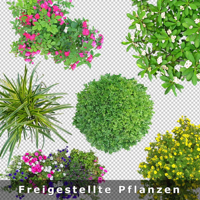 """Pflanzen  Update """"open ArchiVIZ pack"""" mit Top-View Pflanzen für Architektur ..."""
