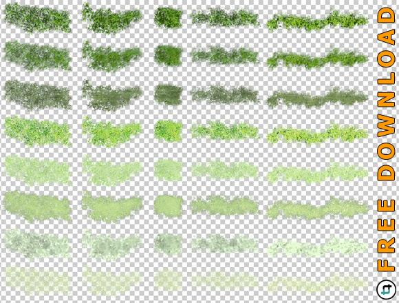Aufsicht-Pflanzen-Architektur-Landschaftsarchitektur-Download