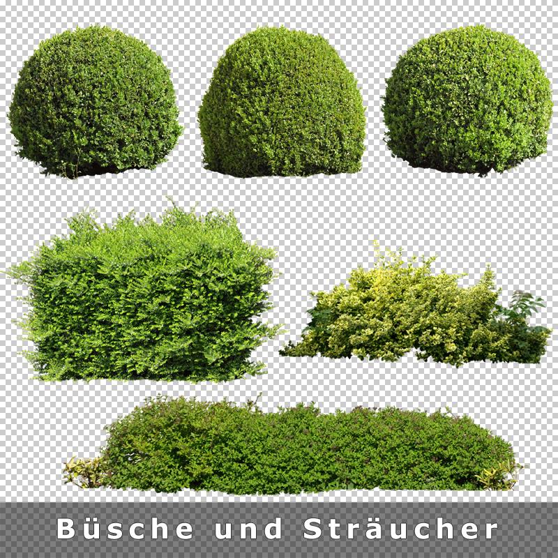 cutout plants v02 pflanzen architektur staffage objekte. Black Bedroom Furniture Sets. Home Design Ideas