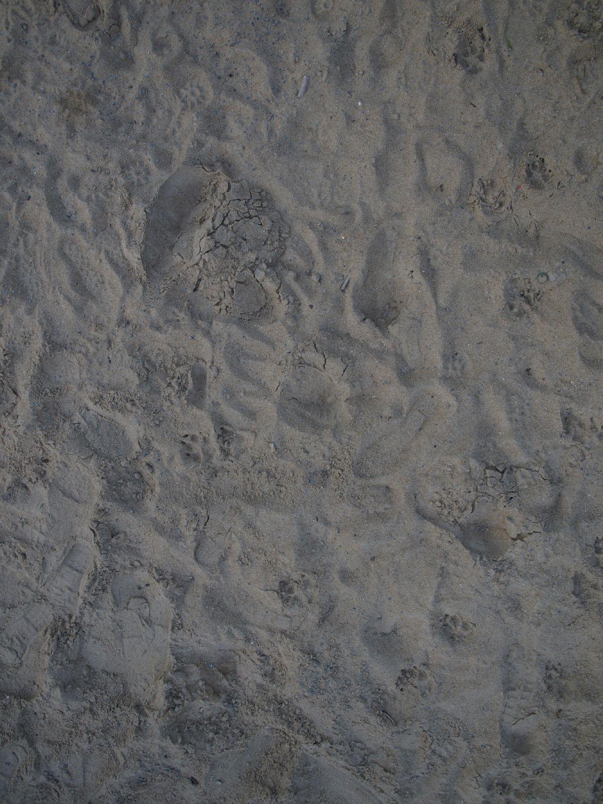 Boden-Erde-Steine_A_P4201602
