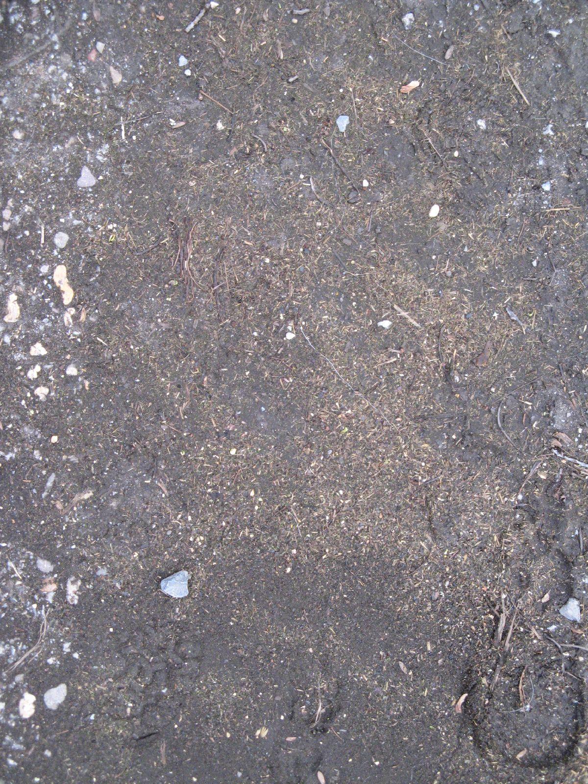 Kostenlose Boden Erde und Sand Textur Foto Sammlung