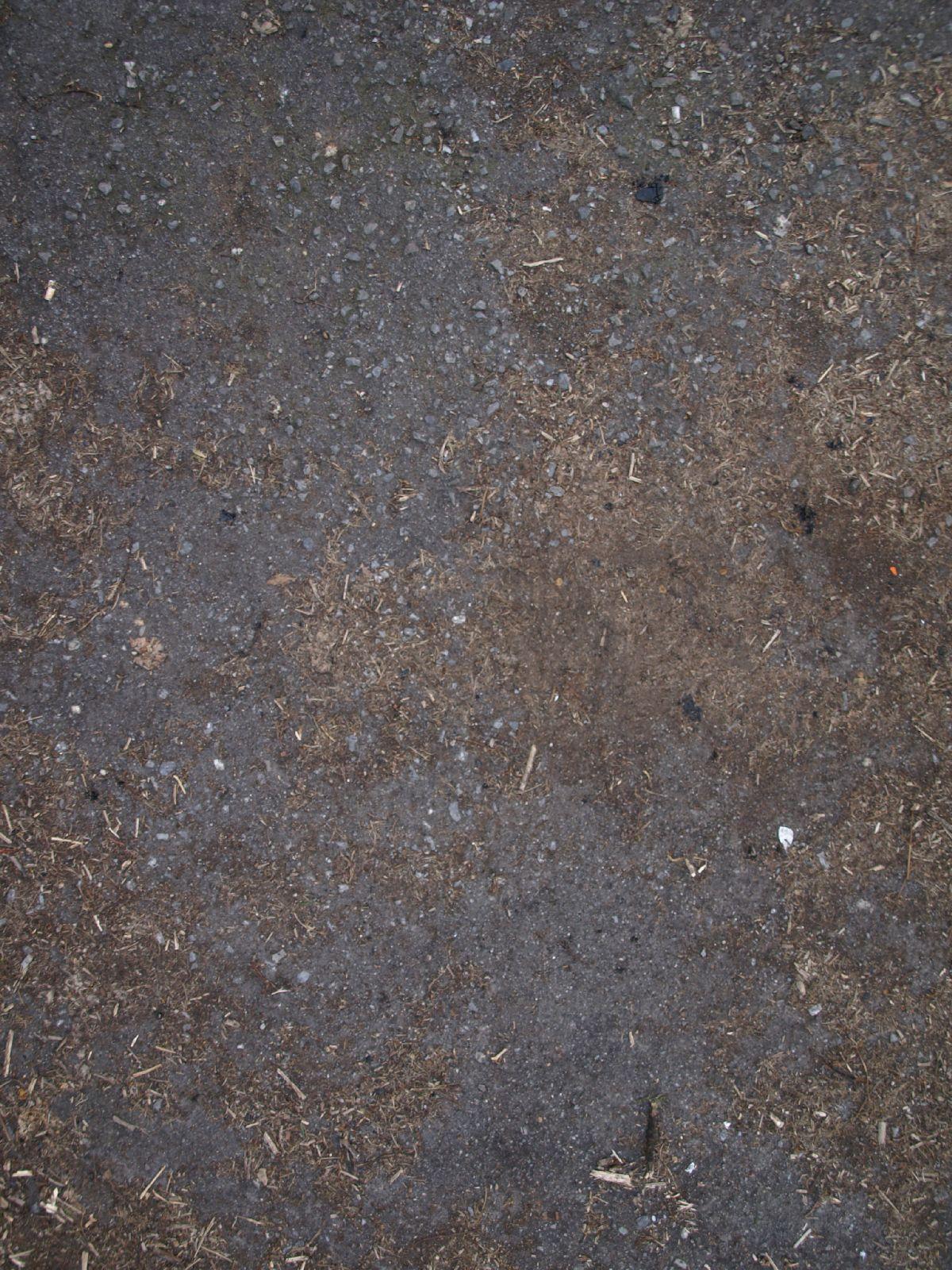 Boden-Erde-Steine_Textur_A_P4121005