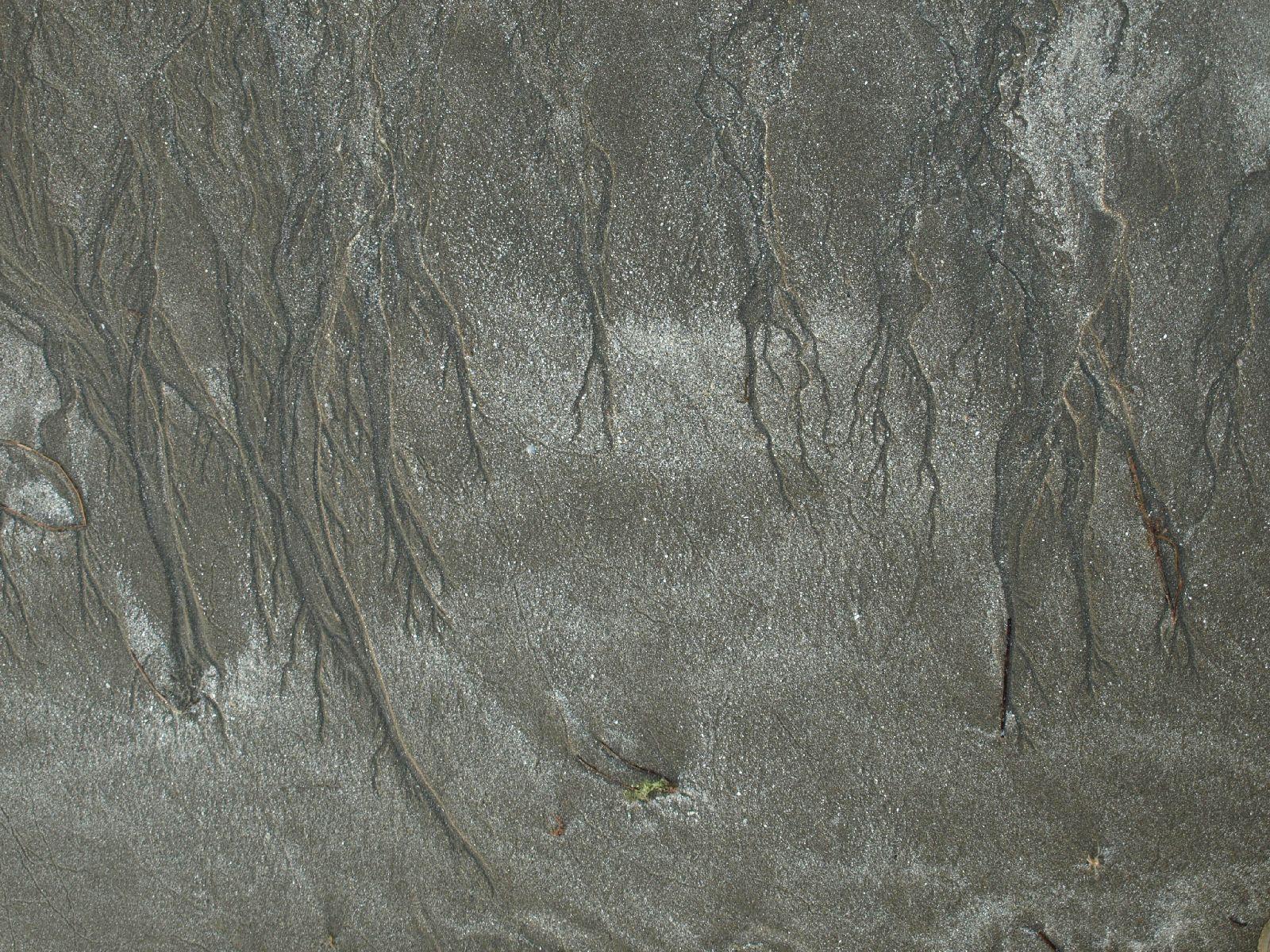Boden-Erde-Steine_Textur_A_P5254978