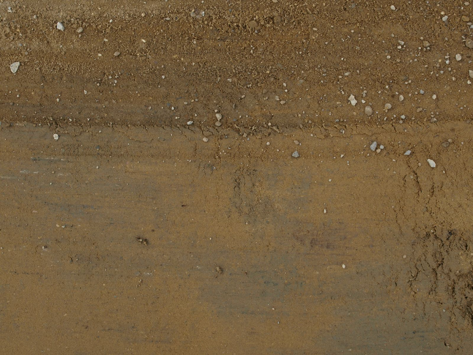 Boden-Erde-Steine_Textur_A_P9195027