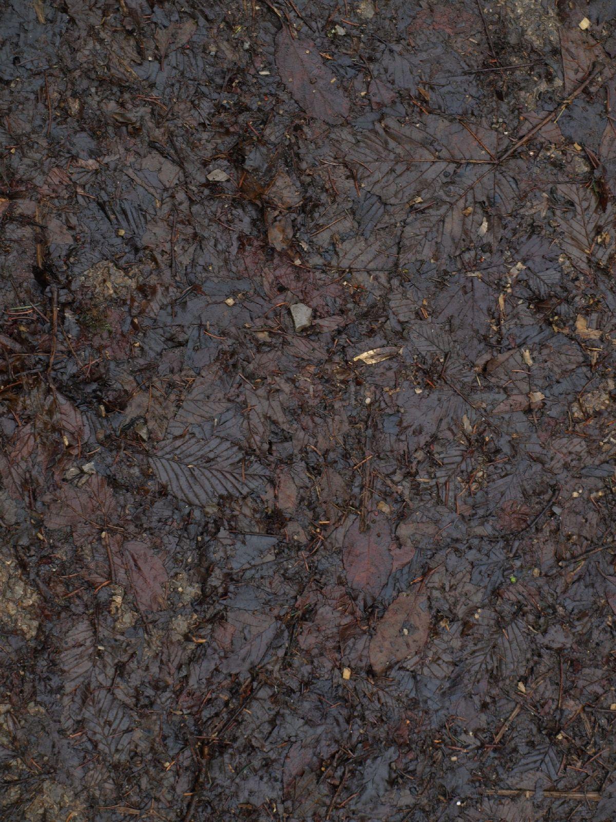 Boden-Erde-Steine_Textur_A_PC217943