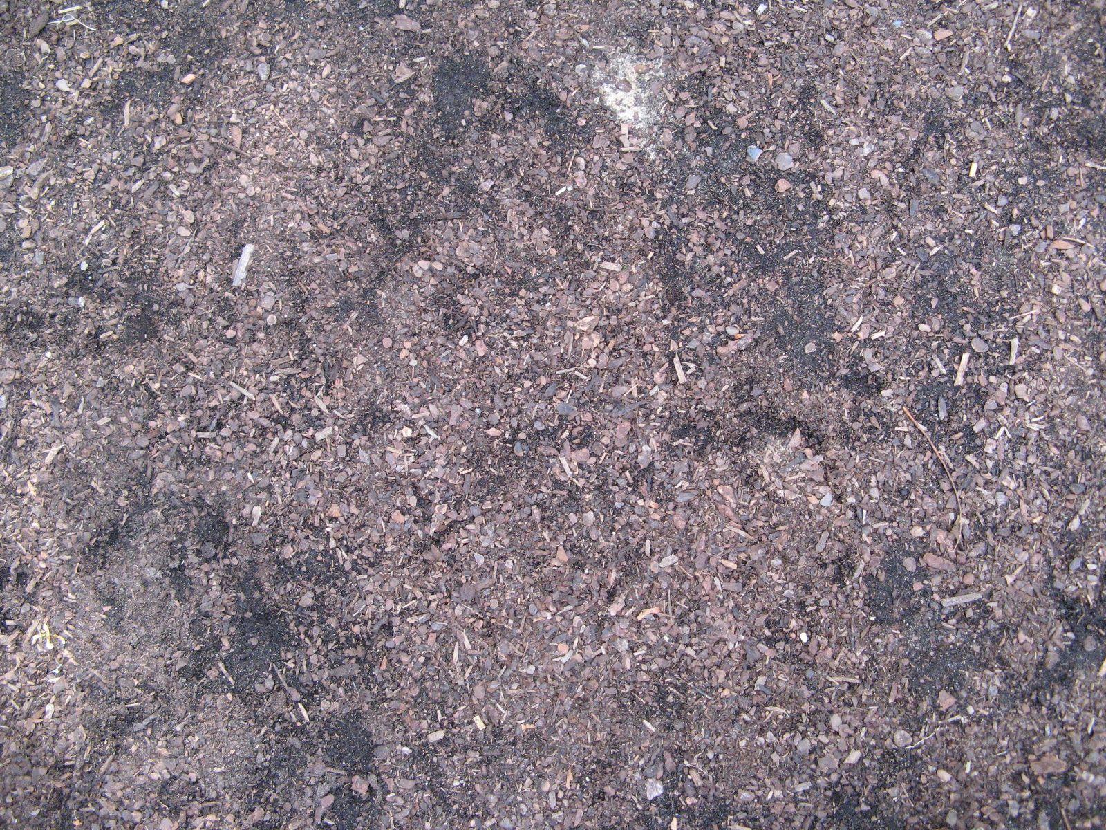 Boden-Erde-Steine_Textur_B_1092