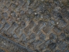 Boden-Erde-Steine_Textur_A_P1018634
