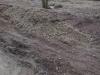 Boden-Erde-Steine_Textur_A_P2010354