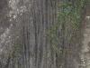 Boden-Erde-Steine_Textur_A_P4070132