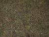 Boden-Erde-Steine_Textur_A_P4131106