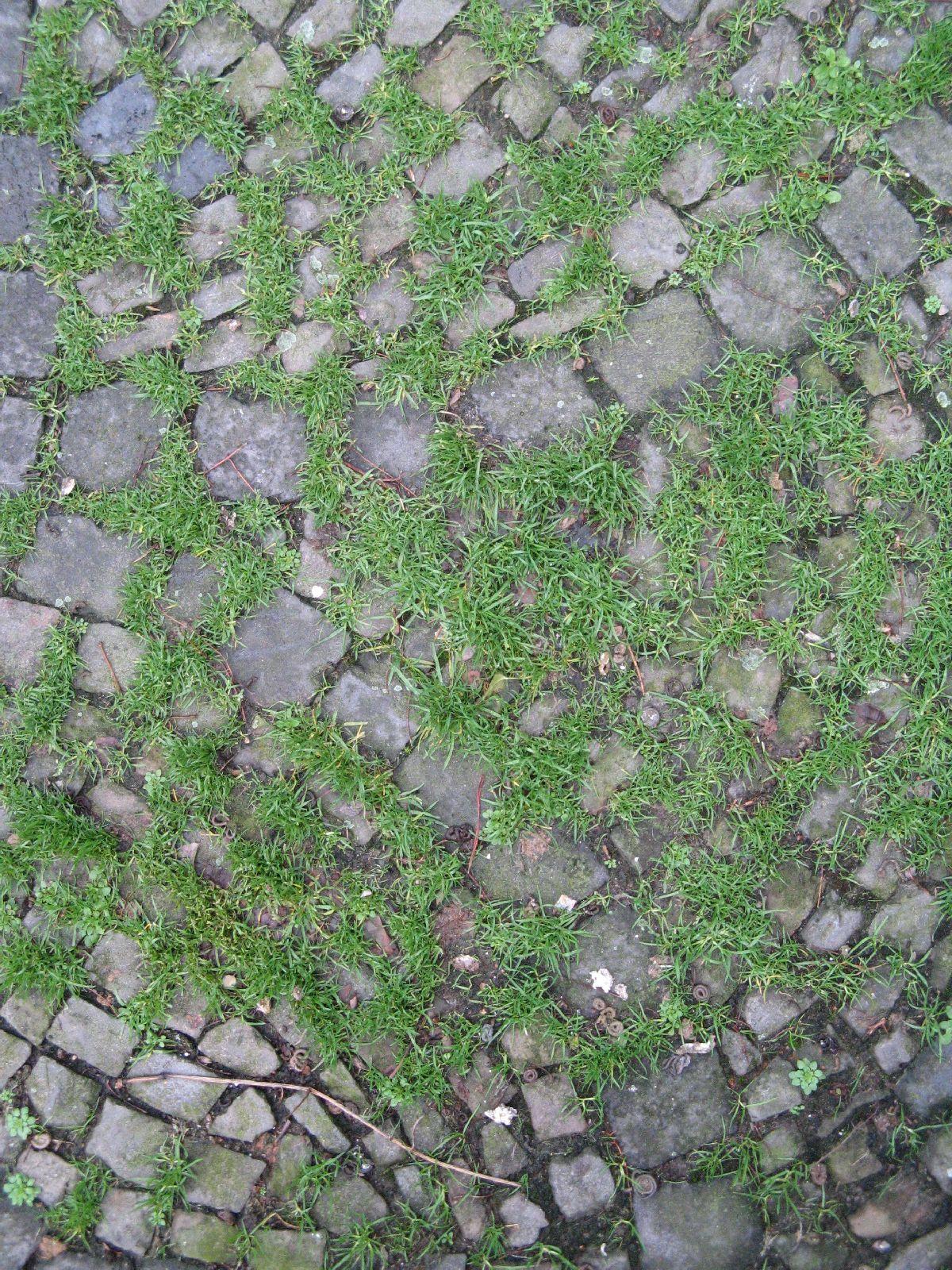 Boden-Gehweg-Strasse-Buergersteig-Textur_B_02248