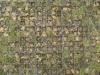 Boden-Gehweg-Strasse-Buergersteig-Textur_B_0189