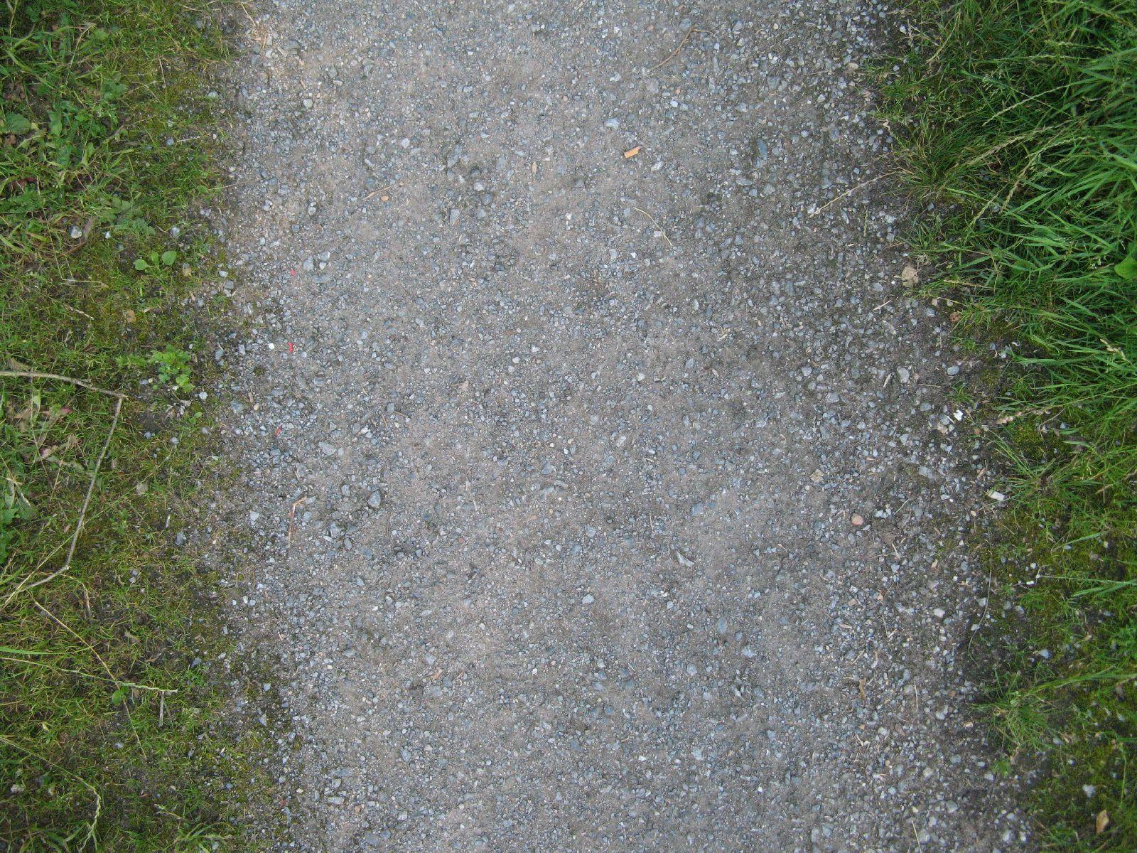 Boden-Gras-Moos-Blumen_Textur_B_00903