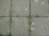 Boden-Strassenelemente_Textur_B_3142