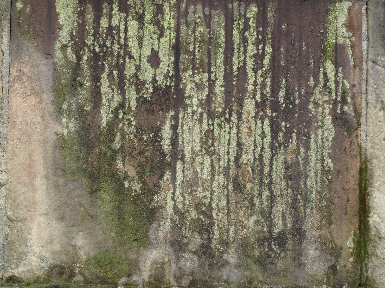 Grunge-Dreck_Textur_A_P5313172