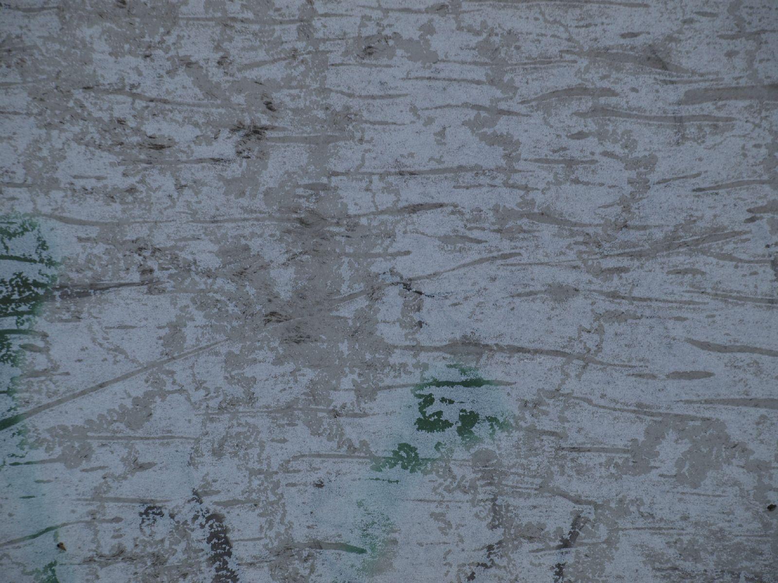 Grunge-Dreck_Textur_A_P8289279