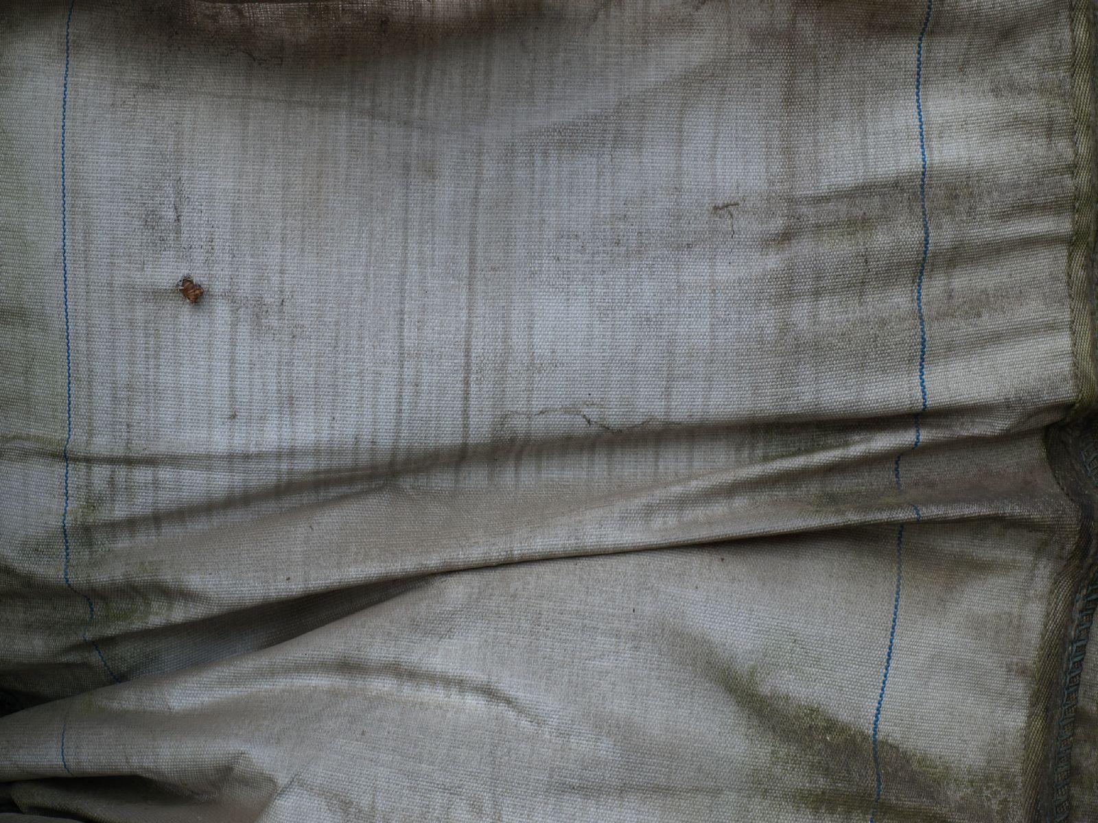 Grunge-Dreck_Textur_A_P8299363