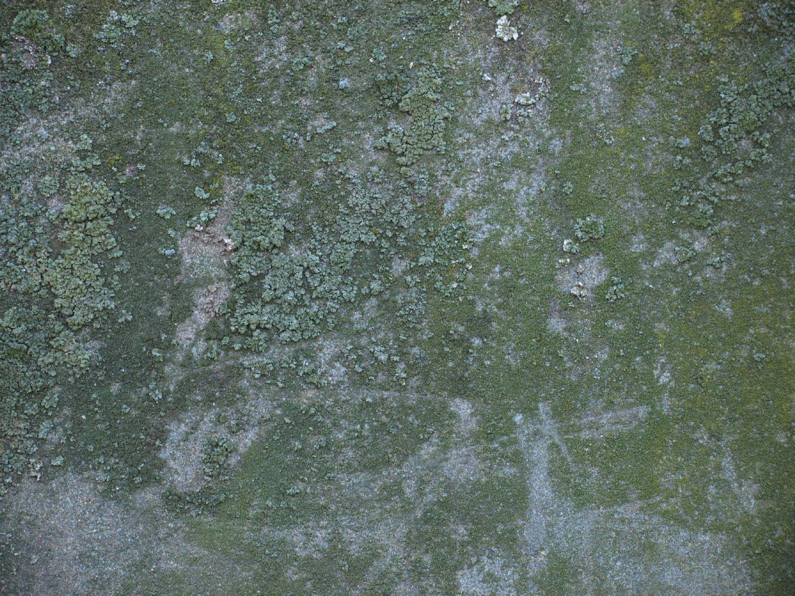 Grunge-Dreck_Textur_A_P9209725