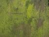 Grunge-Dreck_Textur_A_P1189449