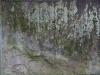 Grunge-Dreck_Textur_A_P2140776