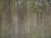 Grunge-Dreck_Textur_A_P2280875
