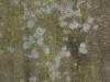 Grunge-Dreck_Textur_A_P2280876
