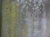 Grunge-Dreck_Textur_A_P2280885