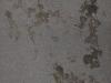 Grunge-Dreck_Textur_A_P4131152