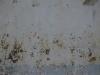 Grunge-Dreck_Textur_A_P8289263