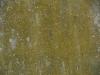 Grunge-Dreck_Textur_A_P8289274