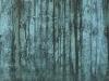 Grunge-Dreck_Textur_A_P8299386