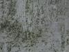 Grunge-Dreck_Textur_A_P9209729