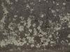 Grunge-Dreck_Textur_A_PA030041