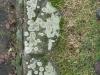 Grunge-Dreck_Textur_B_02109