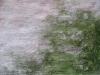 Grunge-Dreck_Textur_B_0760