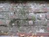 Grunge-Dreck_Textur_B_0895