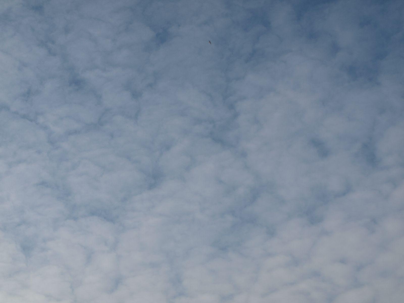 Himmel-Wolken-Foto_Textur_A_P9195038