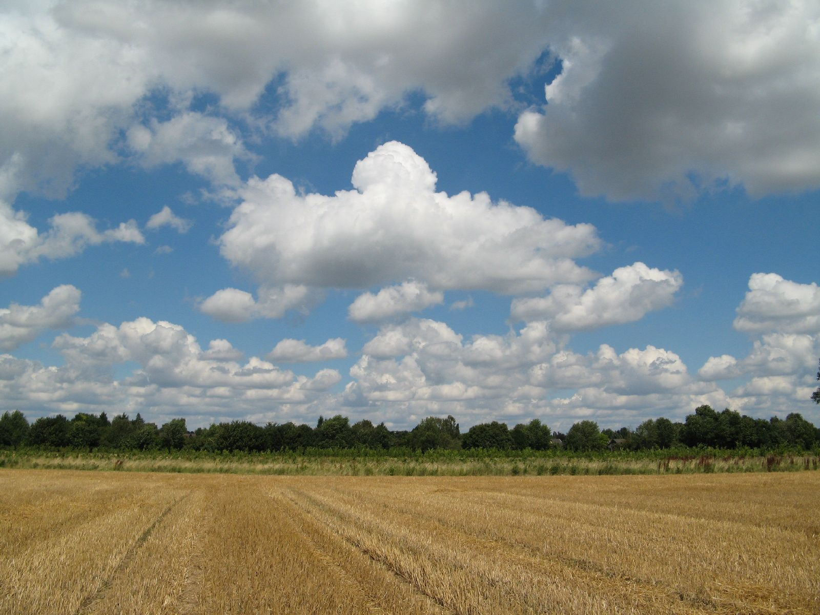 Himmel-Wolken-Foto_Textur_B_00994