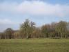 Hintergrund-Landschaft-Natur-Panorama_Textur_A_P3071188