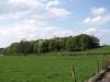 Hintergrund-Landschaft-Natur-Panorama_Textur_A_P4192453