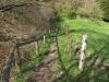 Hintergrund-Landschaft-Natur-Panorama_Textur_A_P4241775