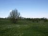 Hintergrund-Landschaft-Natur-Panorama_Textur_A_P5032333