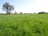 Hintergrund-Landschaft-Natur-Panorama_Textur_A_P5042384