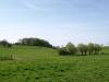 Hintergrund-Landschaft-Natur-Panorama_Textur_A_P5042389