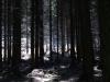 Hintergrund-Landschaft-Natur-Panorama_Textur_A_P5042464